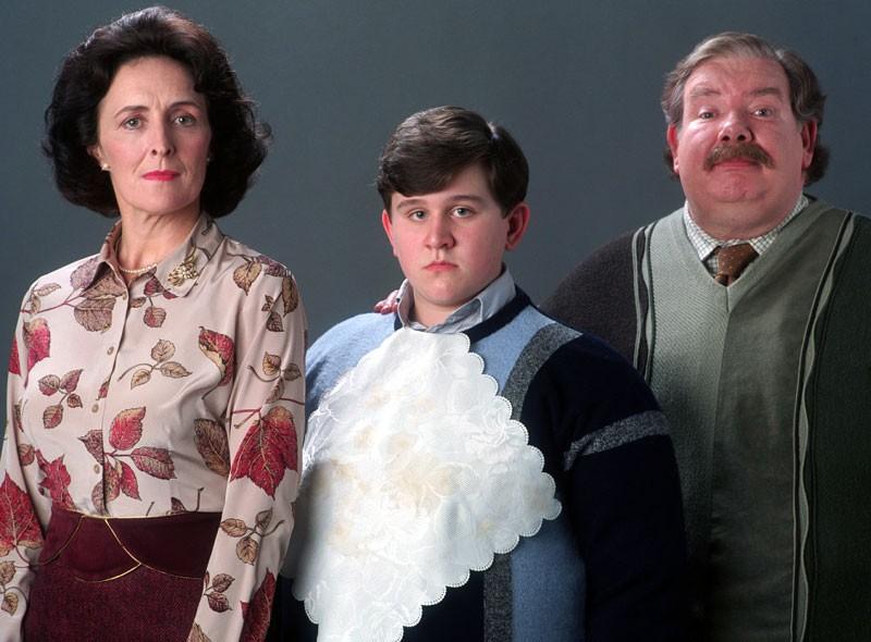 Harry Potter Deli Mi? Seriye Bakış Açınızı Değiştirecek Teori! - Sinema Hanedanı